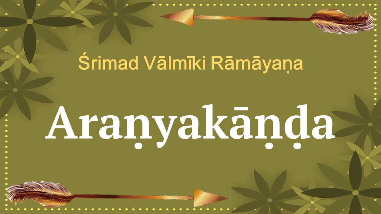 Aranyakanda of the Valmiki Ramayana – A bird's eye view